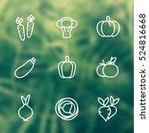 vegetables line icons set ... | Shutterstock .eps vector #524816668