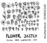 set of flower doodle sketch | Shutterstock .eps vector #524832160