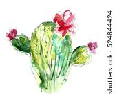watercolor cactus with flowers. | Shutterstock . vector #524844424