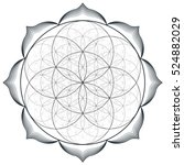 contour monochrome design... | Shutterstock . vector #524882029