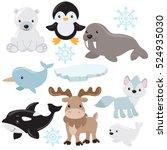 arctic animals vector cartoon... | Shutterstock .eps vector #524935030