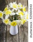 white daffodils at china vase... | Shutterstock . vector #525004543