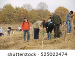 """Small photo of Tigveni, Romania - November 05, 2011: """"Plantam fapte bune"""" forest planting event, organized by Geea group of ecologists with support of Romsilva, romanian gendarmerie and hundreds of volunteers."""