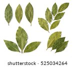 Set Of Dried Bay Leaves...