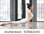full length side view portrait...   Shutterstock . vector #525062143