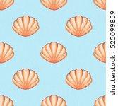 Seashells. Watercolor...