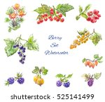 watercolor berries set ... | Shutterstock . vector #525141499