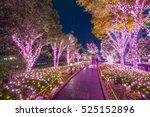winter illumination in tokyo at ... | Shutterstock . vector #525152896