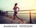 young fitness sports woman ... | Shutterstock . vector #525201244
