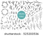vector hand drawn big... | Shutterstock .eps vector #525203536
