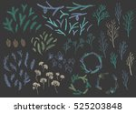 vector hand drawn big... | Shutterstock .eps vector #525203848