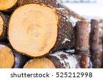 pile of wood logs. wood logs... | Shutterstock . vector #525212998