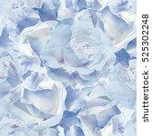 art vintage blurred blue... | Shutterstock . vector #525302248