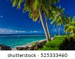coconut palm trees over the... | Shutterstock . vector #525333460