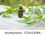 Medicinal Cannabis With Extrac...