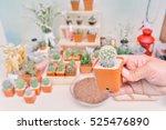 plants the cactus  | Shutterstock . vector #525476890