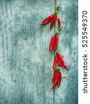 red chili pepper hanging on...   Shutterstock . vector #525549370