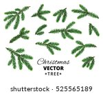 christmas tree branches... | Shutterstock .eps vector #525565189
