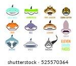 Shark Faces