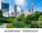 summer scene at central park... | Shutterstock . vector #525613114