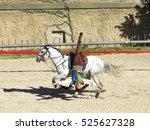 Cavalier Du Puy Du Fou