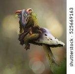 wood goblin   mushrooms keeper  ... | Shutterstock . vector #525669163