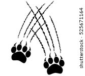 footprints of a big cat paws.... | Shutterstock .eps vector #525671164