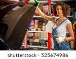 Beautiful Woman Mechanic...