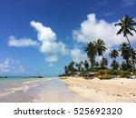 sao miguel  brazil | Shutterstock . vector #525692320