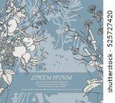 wild flowers  herbs and berries.... | Shutterstock .eps vector #525727420