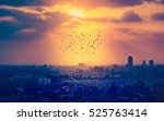 sunset over cairo with... | Shutterstock . vector #525763414