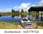 An Airboat In The Marshes Of...