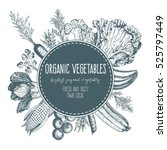 design template for vegetables... | Shutterstock .eps vector #525797449