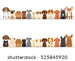small dogs border set  front... | Shutterstock .eps vector #525845920