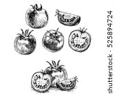 Hand Drawn Set Of Tomato. Retr...