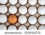 brown egg surrounded by white... | Shutterstock . vector #525910270