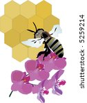 illustration with bee  flower... | Shutterstock .eps vector #5259214