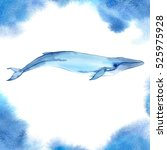 watercolor whale on blue... | Shutterstock . vector #525975928