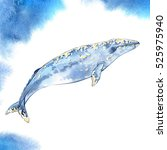 watercolor whale on blue... | Shutterstock . vector #525975940