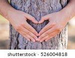 Hands Making A Heart Shape On ...