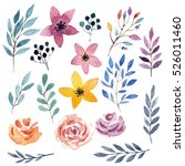 watercolor hand drawn flowers... | Shutterstock . vector #526011460