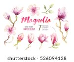 watercolor painting magnolia... | Shutterstock . vector #526094128
