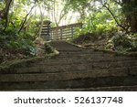 Stone Stairs In Mountain Fores...