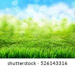 green grass blurred background | Shutterstock . vector #526143316