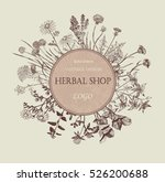 herbal shop logo. hand drawn... | Shutterstock .eps vector #526200688