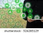 internet of things agriculture... | Shutterstock . vector #526285129