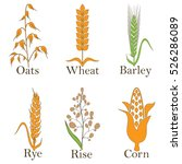 cereals vector icons. rice ... | Shutterstock .eps vector #526286089