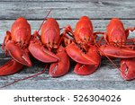 steamed lobsters   4 new... | Shutterstock . vector #526304026