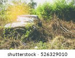 Old Car Wreck In Forest. An Ol...