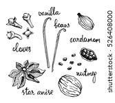 set of spices  nutmeg  cardamom ... | Shutterstock .eps vector #526408000